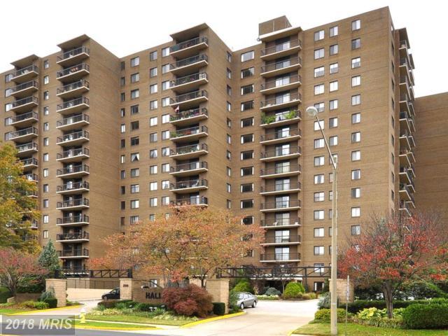 200 N. Pickett Street #1004, Alexandria, VA 22304 (#AX10164114) :: Pearson Smith Realty