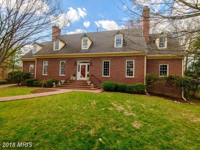 620 Fort Williams Parkway, Alexandria, VA 22304 (#AX10181392) :: Browning Homes Group