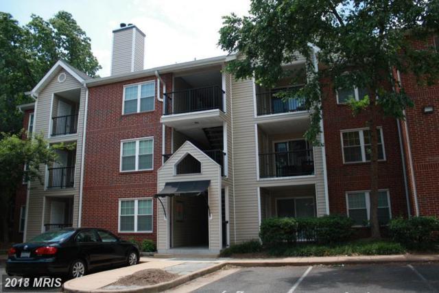 3312 Wyndham Circle #205, Alexandria, VA 22302 (#AX10217098) :: Browning Homes Group