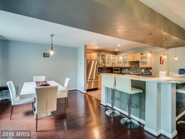 5160 Maris Avenue #401, Alexandria, VA 22304 (#AX10231897) :: The Withrow Group at Long & Foster