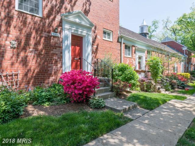 3339 Martha Custis Drive #827, Alexandria, VA 22302 (#AX10235309) :: Dart Homes