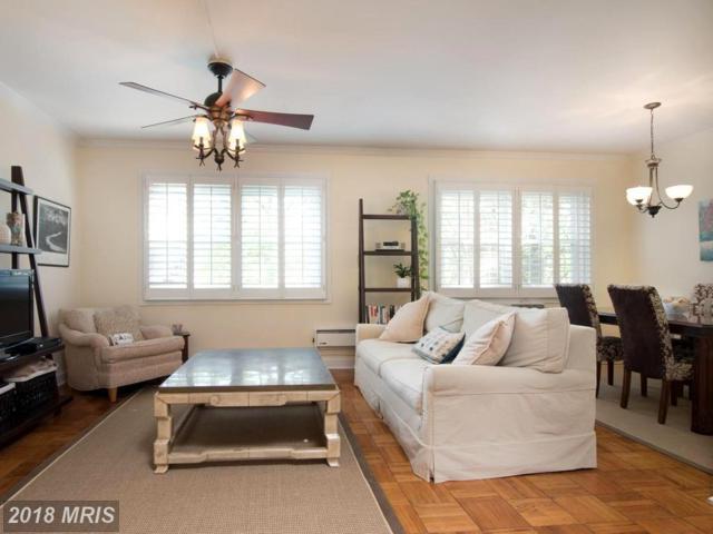 1905 Quaker Lane N #219, Alexandria, VA 22302 (#AX10236774) :: Dart Homes