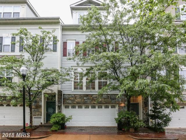 5051 Minda Court, Alexandria, VA 22304 (#AX10247169) :: Dart Homes