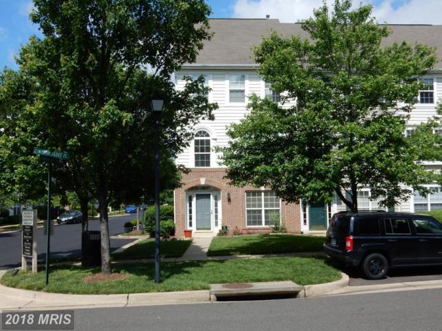 101 Cameron Parke Place, Alexandria, VA 22304 (#AX10247697) :: Great Falls Great Homes