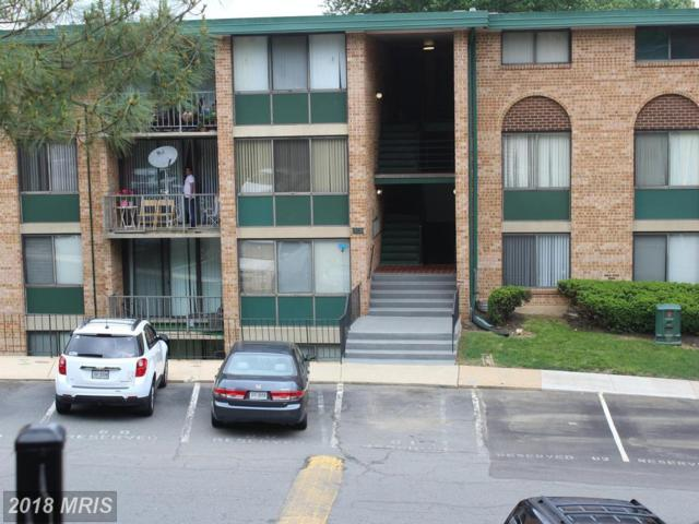 511 Armistead Street #302, Alexandria, VA 22312 (#AX10248448) :: Circadian Realty Group