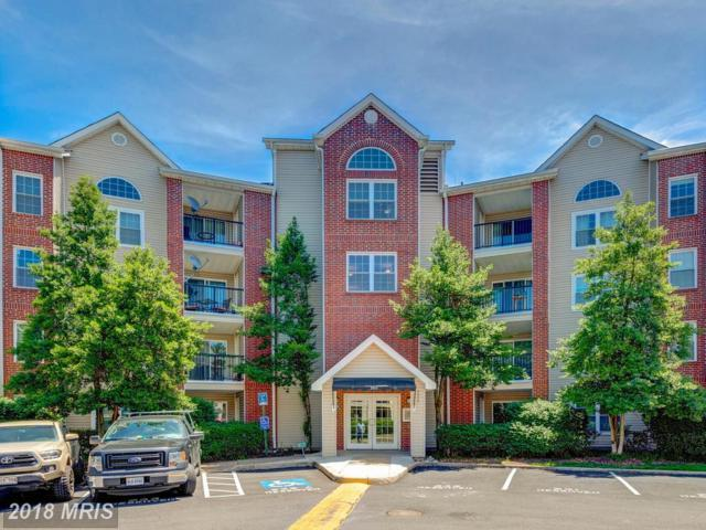 3313 Wyndham Circle #1216, Alexandria, VA 22302 (#AX10257993) :: RE/MAX Executives
