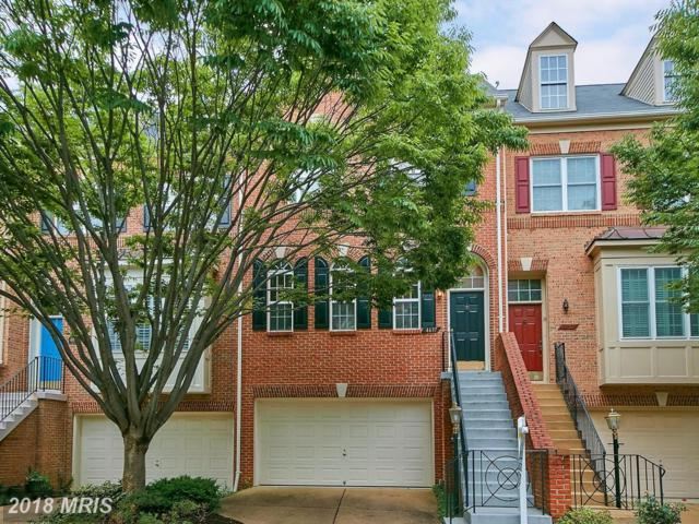 4637 Latrobe Place, Alexandria, VA 22311 (#AX10266689) :: RE/MAX Executives
