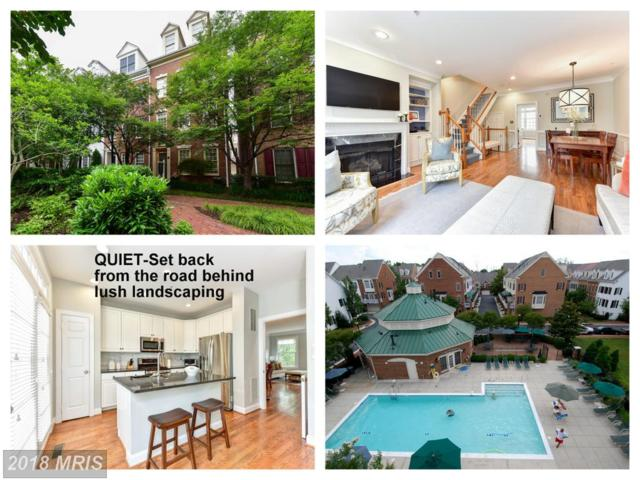 313 Henry Street S, Alexandria, VA 22314 (#AX10267730) :: Jim Bass Group of Real Estate Teams, LLC