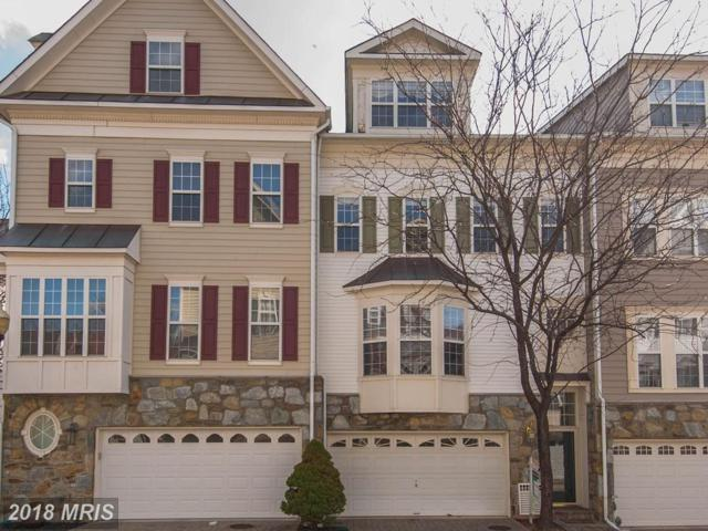 5113 Vos Lane, Alexandria, VA 22304 (#AX10268734) :: Advance Realty Bel Air, Inc