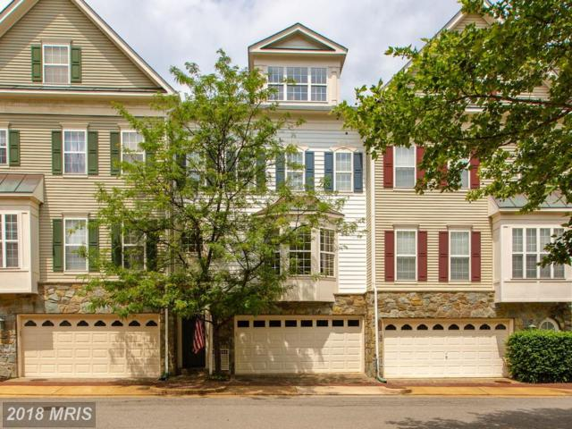 5077 Minda Court, Alexandria, VA 22304 (#AX10269797) :: Advance Realty Bel Air, Inc