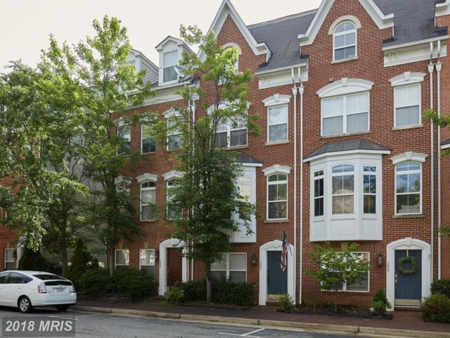 204 Martin Lane, Alexandria, VA 22304 (#AX10272214) :: Advance Realty Bel Air, Inc
