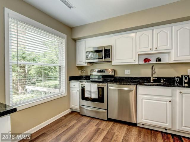 1704 Dogwood Drive, Alexandria, VA 22302 (#AX10277855) :: Charis Realty Group