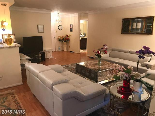 307 Yoakum Parkway #218, Alexandria, VA 22304 (#AX10282143) :: Keller Williams Pat Hiban Real Estate Group