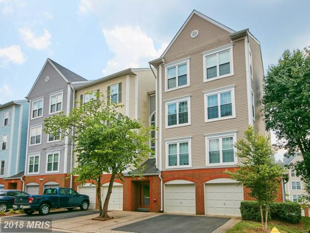 265 Pickett Street #101, Alexandria, VA 22304 (#AX10289811) :: Provident Real Estate