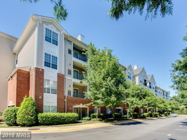 4870 Eisenhower Avenue #204, Alexandria, VA 22304 (#AX10293025) :: Keller Williams Pat Hiban Real Estate Group