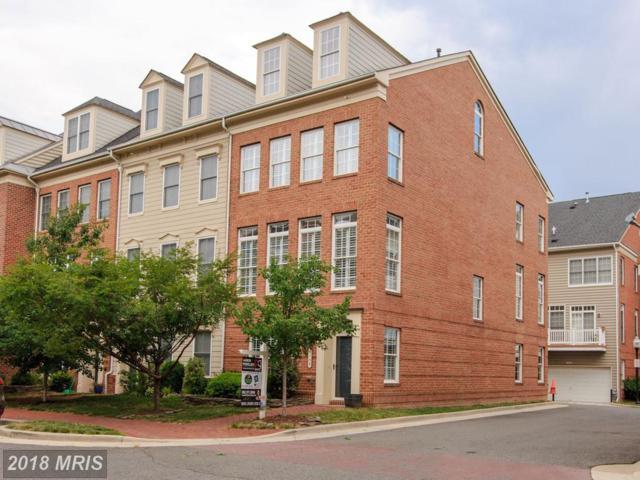 5146 Brawner Place, Alexandria, VA 22304 (#AX10294268) :: Provident Real Estate
