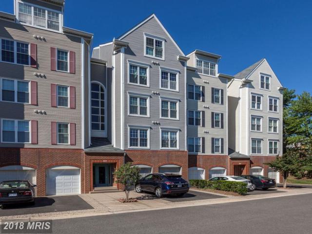 287 Pickett Street #401, Alexandria, VA 22304 (#AX10296671) :: Provident Real Estate
