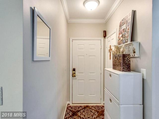 4561 Strutfield Lane #3114, Alexandria, VA 22311 (#AX10297652) :: Charis Realty Group