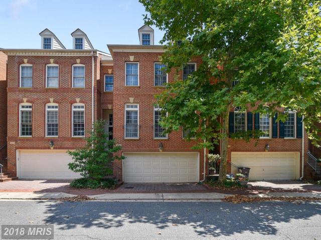 5245 Brawner Place, Alexandria, VA 22304 (#AX10318404) :: RE/MAX Executives