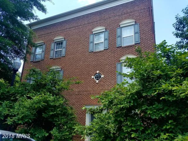 177 Barrett Place, Alexandria, VA 22304 (#AX10322730) :: RE/MAX Executives