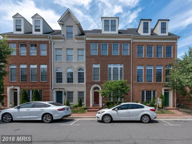 5234 Harold Secord Street, Alexandria, VA 22304 (#AX10326921) :: SURE Sales Group