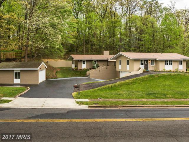 1445 Pegram Street, Alexandria, VA 22304 (#AX9924329) :: Pearson Smith Realty