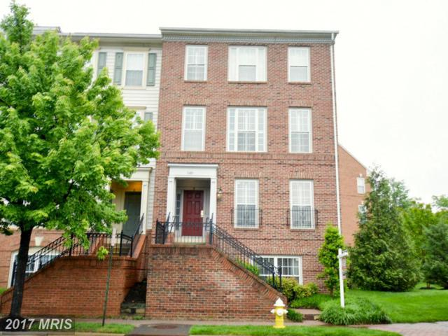 1601-A Potomac Greens Drive, Alexandria, VA 22314 (#AX9940524) :: LoCoMusings