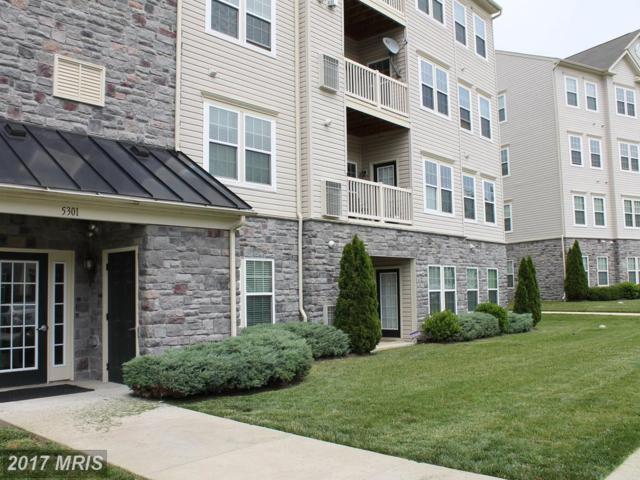 5301 Wyndholme Circle #204, Baltimore, MD 21229 (#BA10036433) :: LoCoMusings