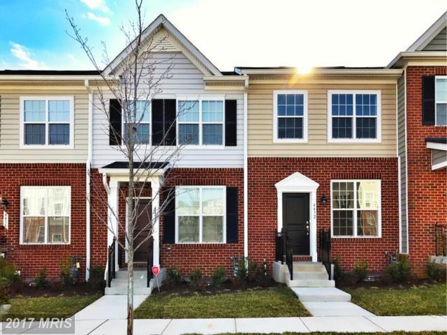 4502 Scarlet Oak Lane, Baltimore, MD 21229 (#BA10083469) :: LoCoMusings