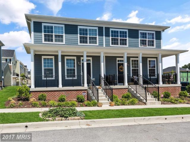 4528 Birchwood Drive, Baltimore, MD 21229 (#BA9997320) :: Pearson Smith Realty