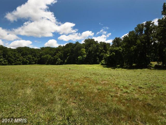 12233 Dover Road, Owings Mills, MD 21117 (#BC10000233) :: Pearson Smith Realty