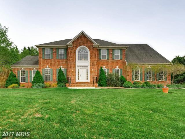 2103 Owen Farm Court, Reisterstown, MD 21136 (#BC10007996) :: The MD Home Team