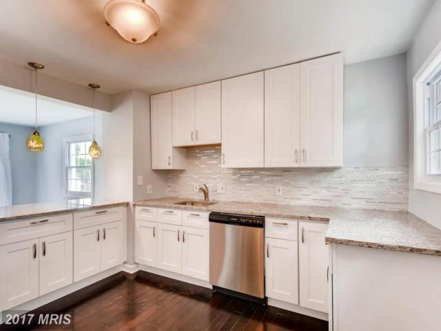7 Right Elevator Drive, Middle River, MD 21220 (#BC10014101) :: Pearson Smith Realty