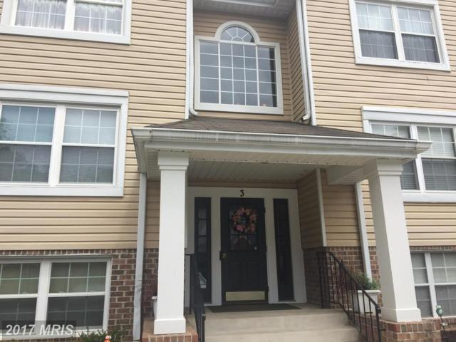 3 Ginford Place #102, Baltimore, MD 21228 (#BC10016774) :: Pearson Smith Realty