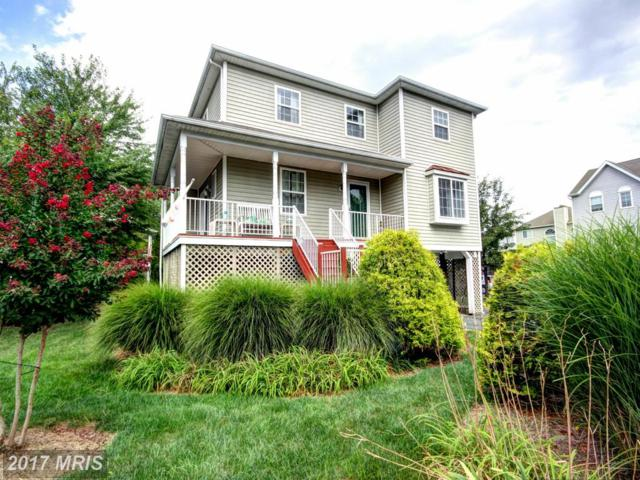 229 Mariners Point Drive, Baltimore, MD 21220 (#BC10017245) :: Pearson Smith Realty