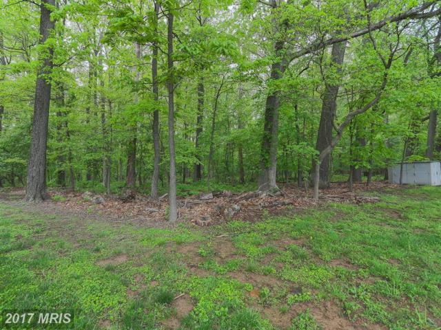 2607 Chestnut Woods Court, Reisterstown, MD 21136 (#BC10017275) :: Pearson Smith Realty