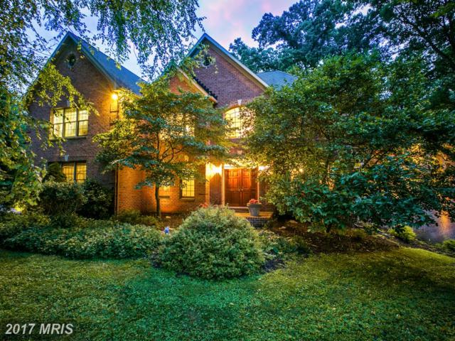 9 Hawick Court, Owings Mills, MD 21117 (#BC10017949) :: Pearson Smith Realty