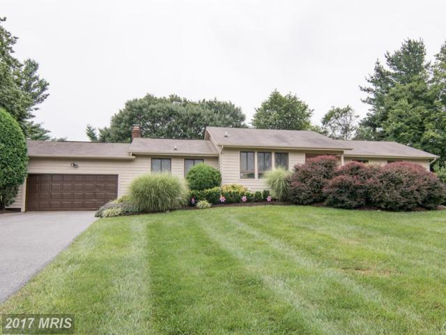 12008 Hunting Tweed Drive, Owings Mills, MD 21117 (#BC10019499) :: Pearson Smith Realty