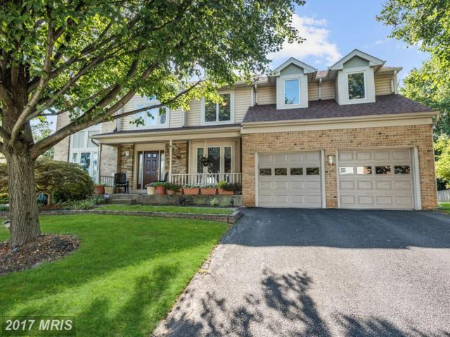 4 Breezy Court, Reisterstown, MD 21136 (#BC10023810) :: Pearson Smith Realty