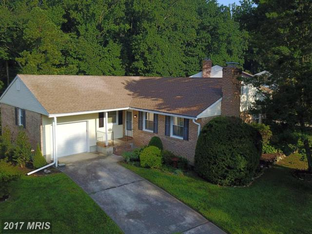 2 Lord Mayors Court, Cockeysville, MD 21030 (#BC10024392) :: Pearson Smith Realty