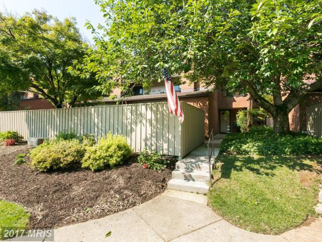 219 Deer Fox Lane, Lutherville Timonium, MD 21093 (#BC10025802) :: Pearson Smith Realty