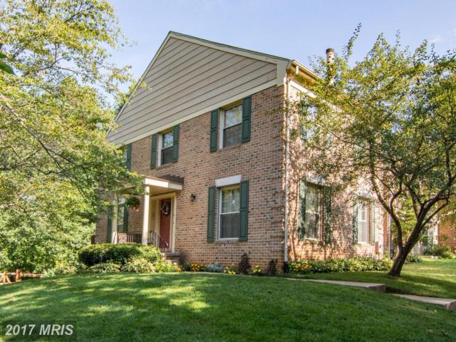 2 The Strand, Sparks, MD 21152 (#BC10031597) :: Pearson Smith Realty
