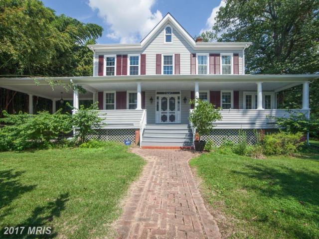 1721 Arlington Avenue, Baltimore, MD 21227 (#BC10033894) :: Pearson Smith Realty