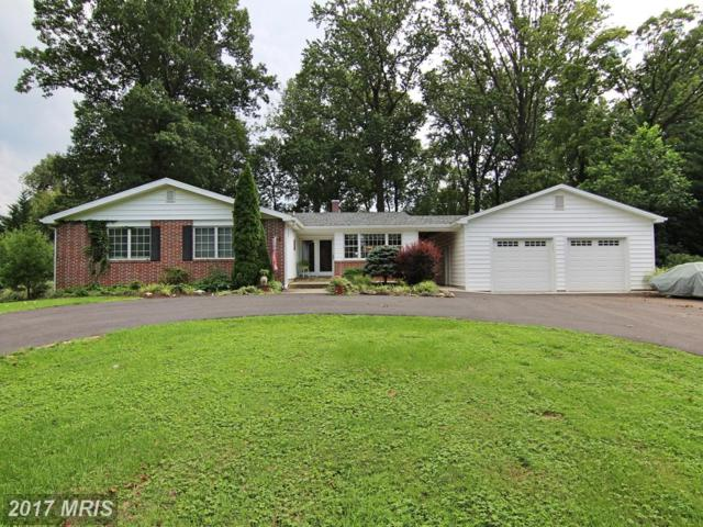 103 Tree Top Court, Lutherville Timonium, MD 21093 (#BC10034350) :: The Sebeck Team of RE/MAX Preferred
