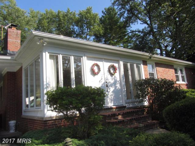 13 Sunnyview Drive, Phoenix, MD 21131 (#BC10037666) :: Pearson Smith Realty