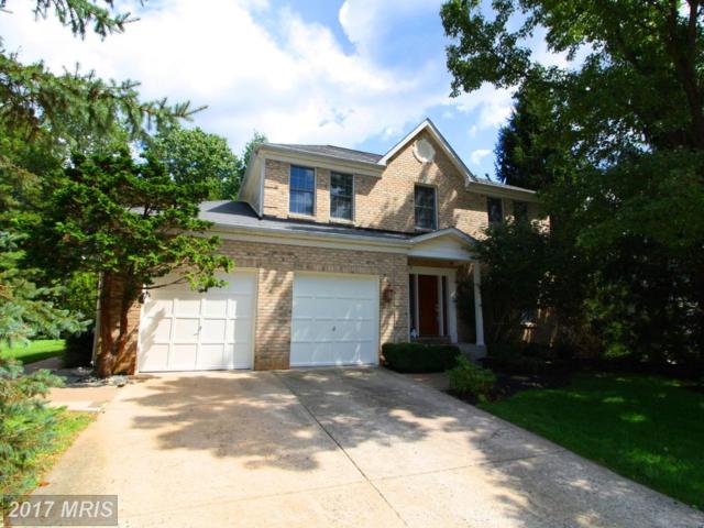 9 Ringleaf Court, Cockeysville, MD 21030 (#BC10037887) :: Pearson Smith Realty