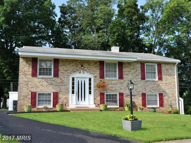 8420 Maymeadow Court, Baltimore, MD 21244 (#BC10037992) :: Pearson Smith Realty