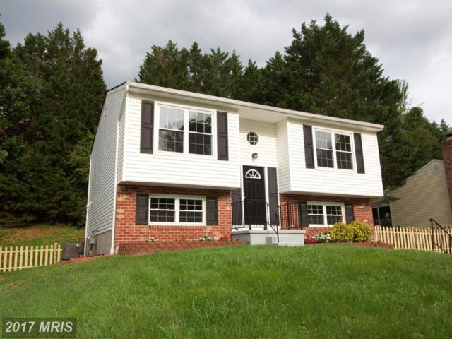 9543 Hickoryhurst Drive, Baltimore, MD 21236 (#BC10042990) :: Pearson Smith Realty
