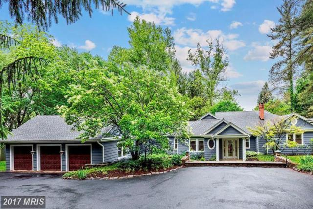 10531 Park Heights Avenue, Stevenson, MD 21153 (#BC10046044) :: Pearson Smith Realty