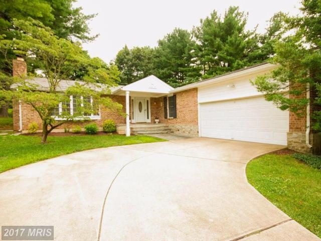 2215 Spring Lake Drive, Lutherville Timonium, MD 21093 (#BC10047859) :: Pearson Smith Realty